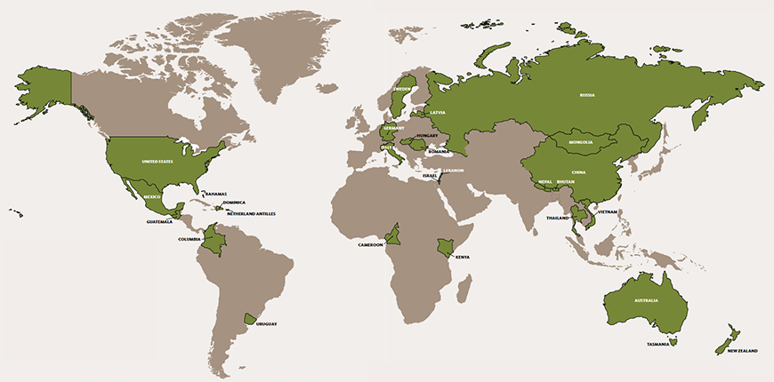 NPI's Global Scope of attendance in the Executive Leadership Program from around the world.